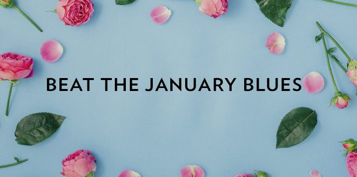Our authors give their tips for beating the January blues!