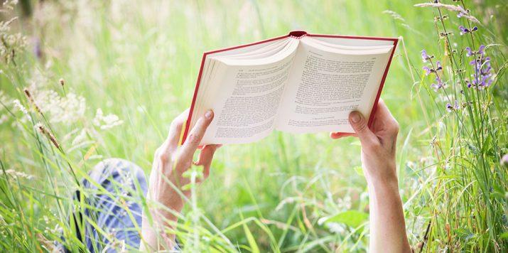 #SummerSizzler Author Post – Nicole Locke